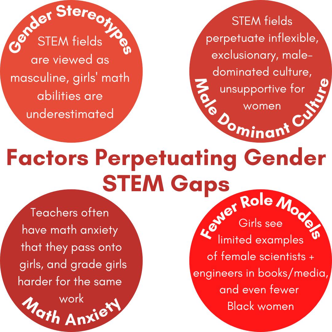 Factors Perpetuating Gender STEM Gaps